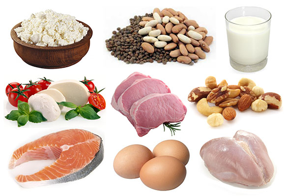 Một số loại thực phẩm chứa protein